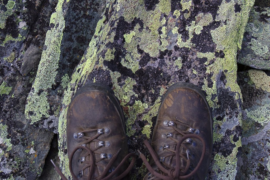 Lichens and Boots