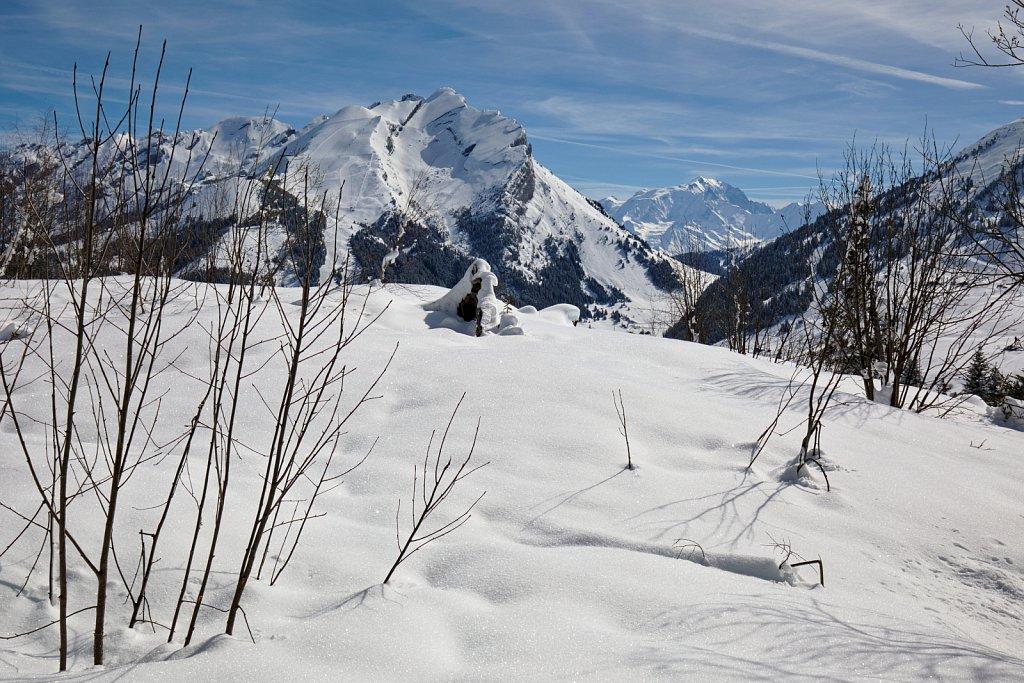 Mont Blanc Peeping